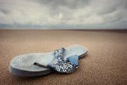 Beachcombing /  [a flip.jpg nggid03309 ngg0dyn 180x0 00f0w010c010r110f110r010t010]