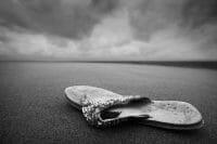 Beachcombing /  [a flip 2.jpg nggid03308 ngg0dyn 200x0 00f0w010c010r110f110r010t010]