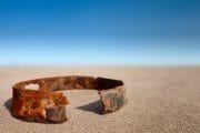 Beachcombing /  [beach studio.jpg nggid03307 ngg0dyn 180x0 00f0w010c010r110f110r010t010]