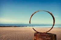 Beachcombing /  [beach studio 2.jpg nggid03306 ngg0dyn 200x0 00f0w010c010r110f110r010t010]