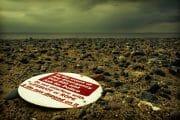 Beachcombing /  [cant read wont read.jpg nggid03294 ngg0dyn 180x0 00f0w010c010r110f110r010t010]
