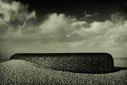 Beachcombing /  [end of the road 3.jpg nggid03296 ngg0dyn 180x0 00f0w010c010r110f110r010t010]