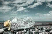 Beachcombing /  [familiar ground.jpg nggid03304 ngg0dyn 180x0 00f0w010c010r110f110r010t010]