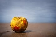 Beachcombing /  [game over.jpg nggid03311 ngg0dyn 180x0 00f0w010c010r110f110r010t010]