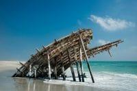 Beachcombing /  [masirah island 5.jpg nggid03314 ngg0dyn 200x0 00f0w010c010r110f110r010t010]