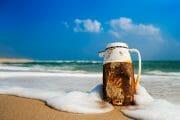 Beachcombing /  [morning coffee.jpg nggid03312 ngg0dyn 180x0 00f0w010c010r110f110r010t010]