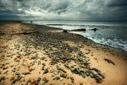 The Fylde Coast /  [an item of interest.jpg nggid041035 ngg0dyn 180x0 00f0w010c010r110f110r010t010]