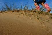The Fylde Coast /  [cant catch me.jpg nggid03930 ngg0dyn 180x0 00f0w010c010r110f110r010t010]