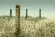 The Fylde Coast /  [change of pace.jpg nggid03983 ngg0dyn 180x0 00f0w010c010r110f110r010t010]