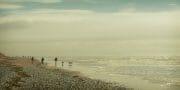 The Fylde Coast /  [coming back.jpg nggid03978 ngg0dyn 180x0 00f0w010c010r110f110r010t010]