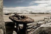 The Fylde Coast /  [fe2o3 3.jpg nggid03959 ngg0dyn 180x0 00f0w010c010r110f110r010t010]