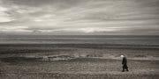 The Fylde Coast /  [unitled 0175.jpg nggid041114 ngg0dyn 180x0 00f0w010c010r110f110r010t010]