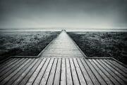 The Fylde Coast /  [walk away.jpg nggid041105 ngg0dyn 180x0 00f0w010c010r110f110r010t010]