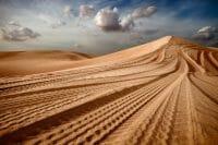 Dubai /  [desert tracks.jpg nggid03493 ngg0dyn 200x0 00f0w010c010r110f110r010t010]