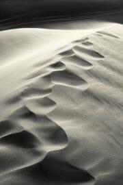 Dubai /  [desert tracks 3.jpg nggid03496 ngg0dyn 180x0 00f0w010c010r110f110r010t010]
