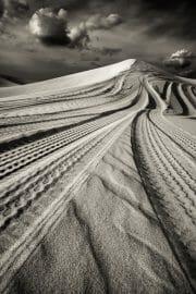 Dubai /  [desert tracks 4.jpg nggid03494 ngg0dyn 180x0 00f0w010c010r110f110r010t010]
