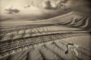 Dubai /  [desert tracks 5.jpg nggid03492 ngg0dyn 180x0 00f0w010c010r110f110r010t010]