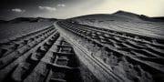 Dubai /  [desert tracks 7.jpg nggid03588 ngg0dyn 180x0 00f0w010c010r110f110r010t010]