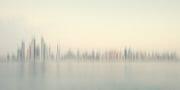 Dubai /  [gpp 2014 8.jpg nggid03608 ngg0dyn 180x0 00f0w010c010r110f110r010t010]