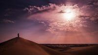 Dubai /  [untitled 0162.jpg nggid03590 ngg0dyn 200x0 00f0w010c010r110f110r010t010]