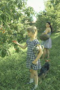 Family & Food (Bulgaria) /  [7.jpg nggid041707 ngg0dyn 200x0 00f0w010c010r110f110r010t010]