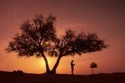 Oman /  [DSF9224.jpg nggid03745 ngg0dyn 180x0 00f0w010c010r110f110r010t010]