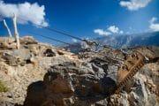Oman /  [jabel shams canyon 2.jpg nggid03658 ngg0dyn 180x0 00f0w010c010r110f110r010t010]