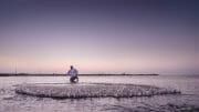 Oman /  [masirah island 2015 5.jpg nggid03729 ngg0dyn 180x0 00f0w010c010r110f110r010t010]