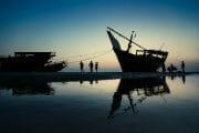 Oman /  [masirah island 3.jpg nggid03708 ngg0dyn 180x0 00f0w010c010r110f110r010t010]