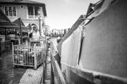 Street Photography /  [T1A8181 1.jpg nggid03206 ngg0dyn 180x0 00f0w010c010r110f110r010t010]