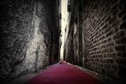 Street Photography /  [T1A8880 1.jpg nggid03218 ngg0dyn 180x0 00f0w010c010r110f110r010t010]