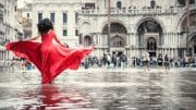 Street Photography /  [T1B9144 1.jpg nggid03214 ngg0dyn 180x0 00f0w010c010r110f110r010t010]