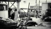 Street Photography /  [gpp 2012 12.jpg nggid03140 ngg0dyn 180x0 00f0w010c010r110f110r010t010]
