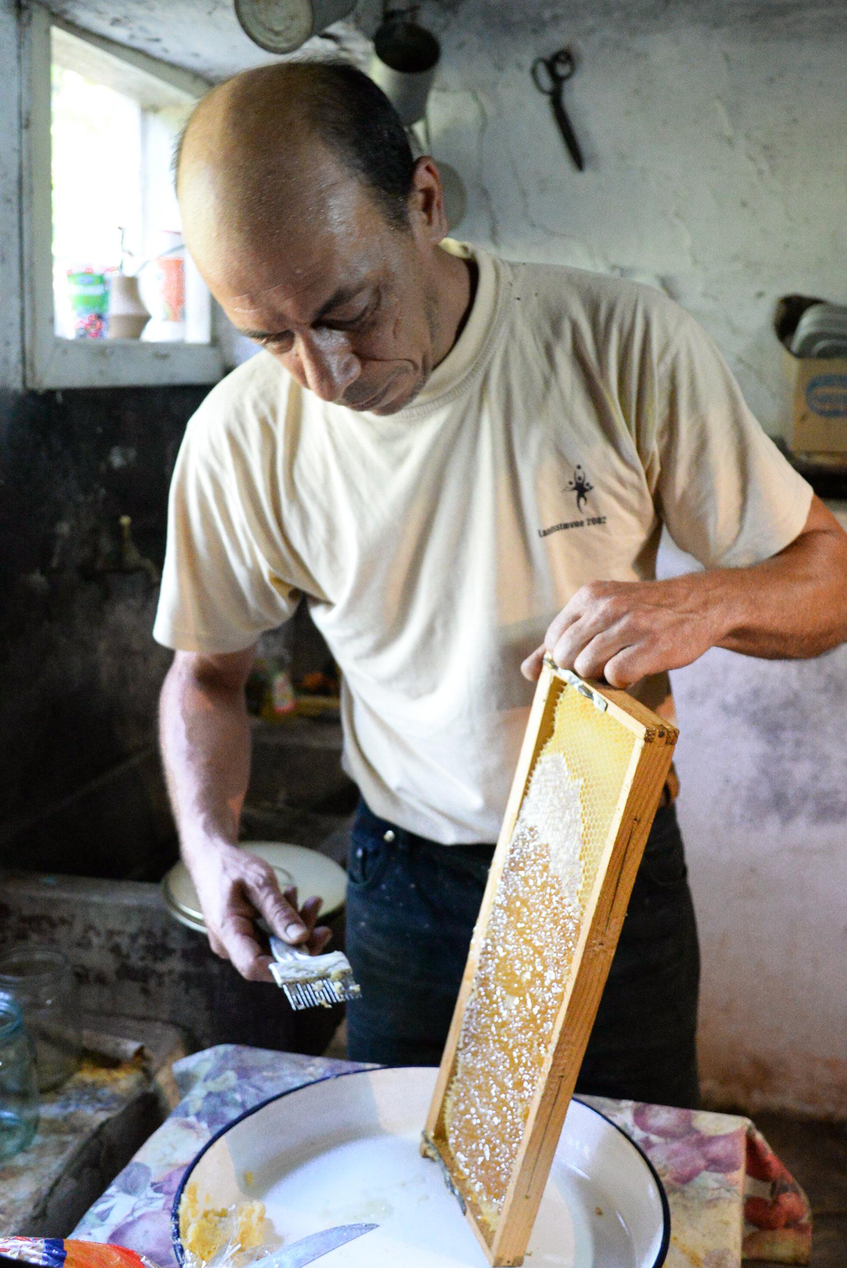Village Honey /  [Village Honey 24]