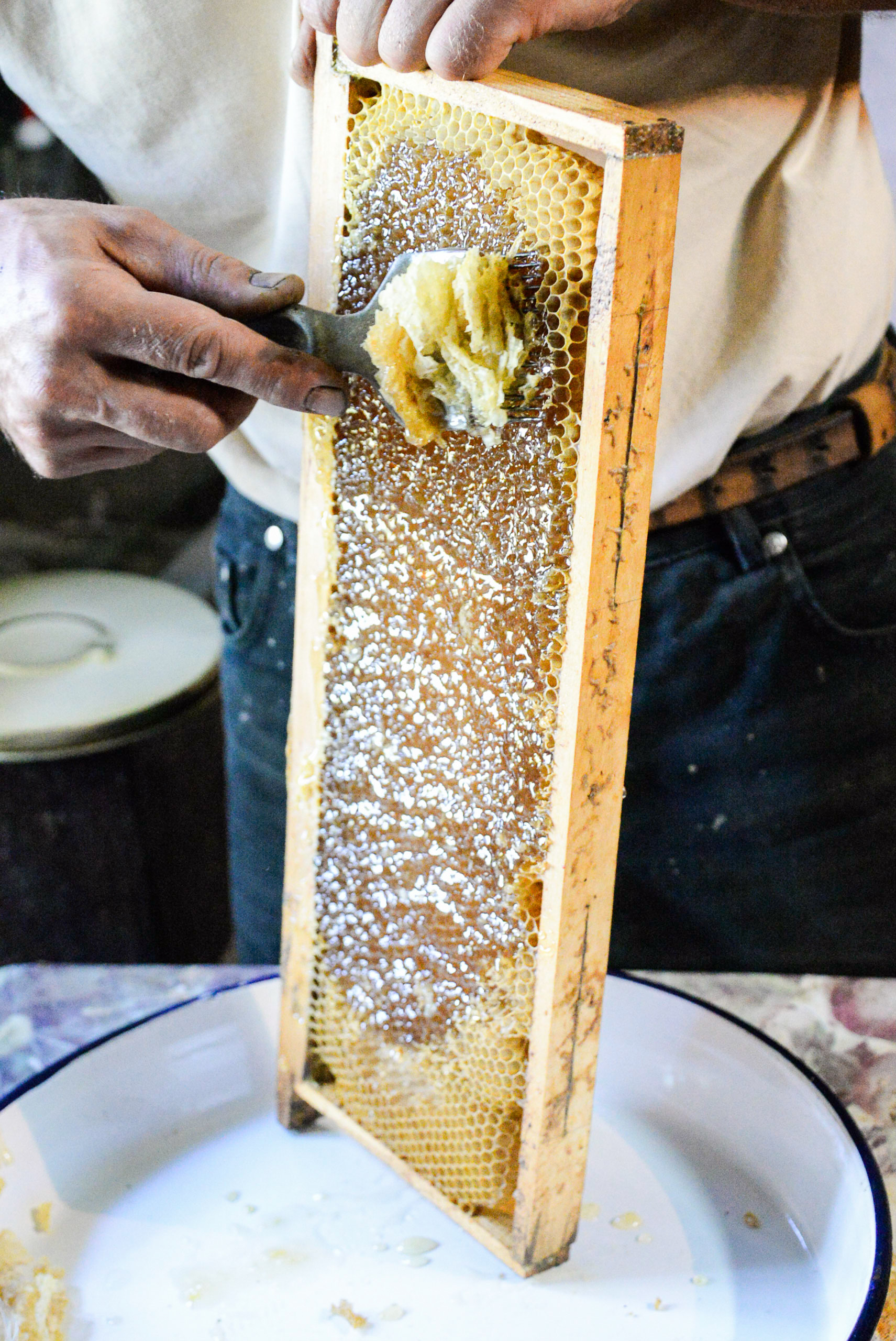 Village Honey /  [Village Honey 25]