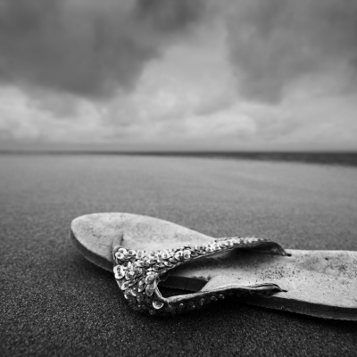 Photography /  [beachcombing featured 400x400]