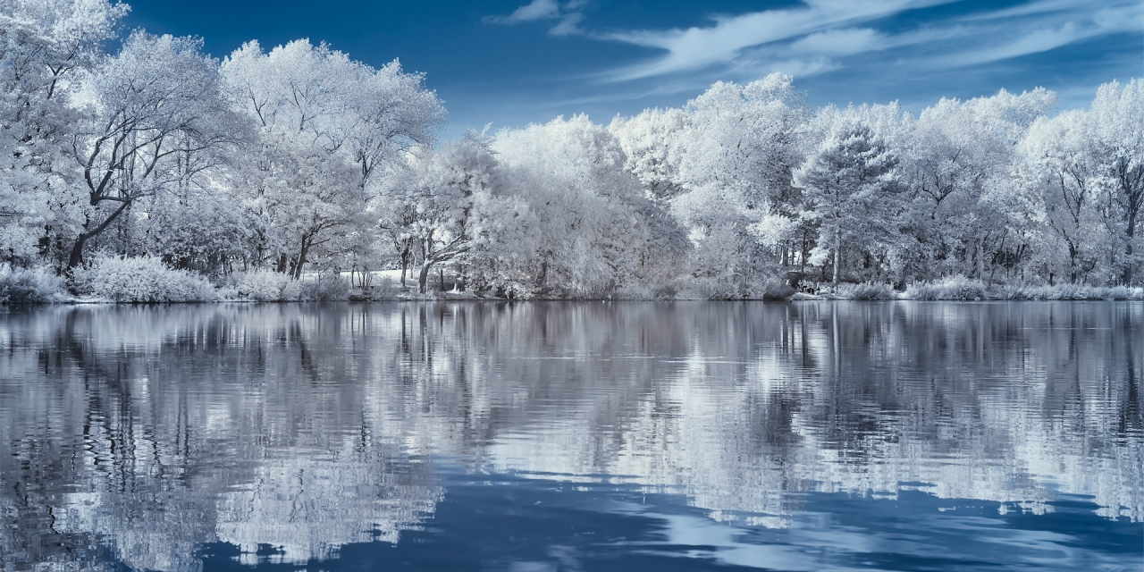 Stanley Park #2 (infrared) / Show the Original, Infrared, Fujinon XF 16-55mm f/2.8, Fujifilm X-E2 [stanely park infrared 2 f 1280x640]