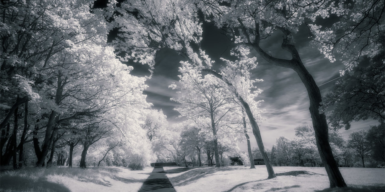 Stanley Park, May 2019 (IR) #2 / Stanley Park, Show the Original, Landscape Photography, Infrared, Fujinon XF 14mm f/2.8, Fujifilm X-E2, Blackpool [stanley park may 2019 2 f 1280x640]