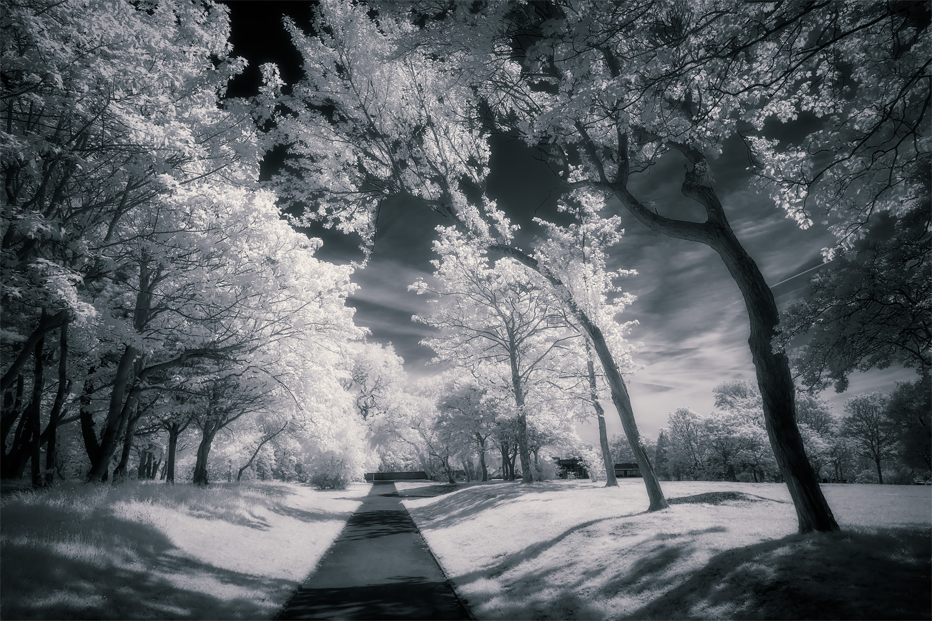 Stanley Park, May 2019 (IR) #2 / Stanley Park, Show the Original, Landscape Photography, Infrared, Fujinon XF 14mm f/2.8, Fujifilm X-E2, Blackpool [stanley park may 2019 2 f]