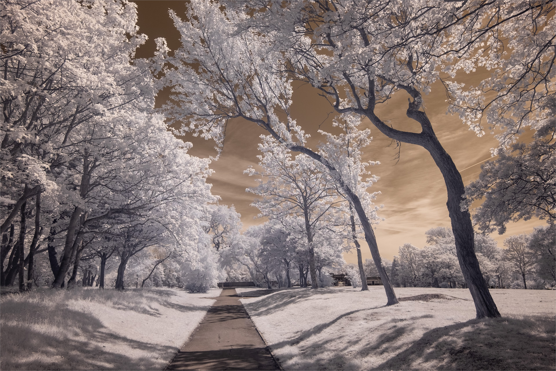Stanley Park, May 2019 (IR) #2 / Stanley Park, Show the Original, Landscape Photography, Infrared, Fujinon XF 14mm f/2.8, Fujifilm X-E2, Blackpool [stanley park may 2019 2 o]