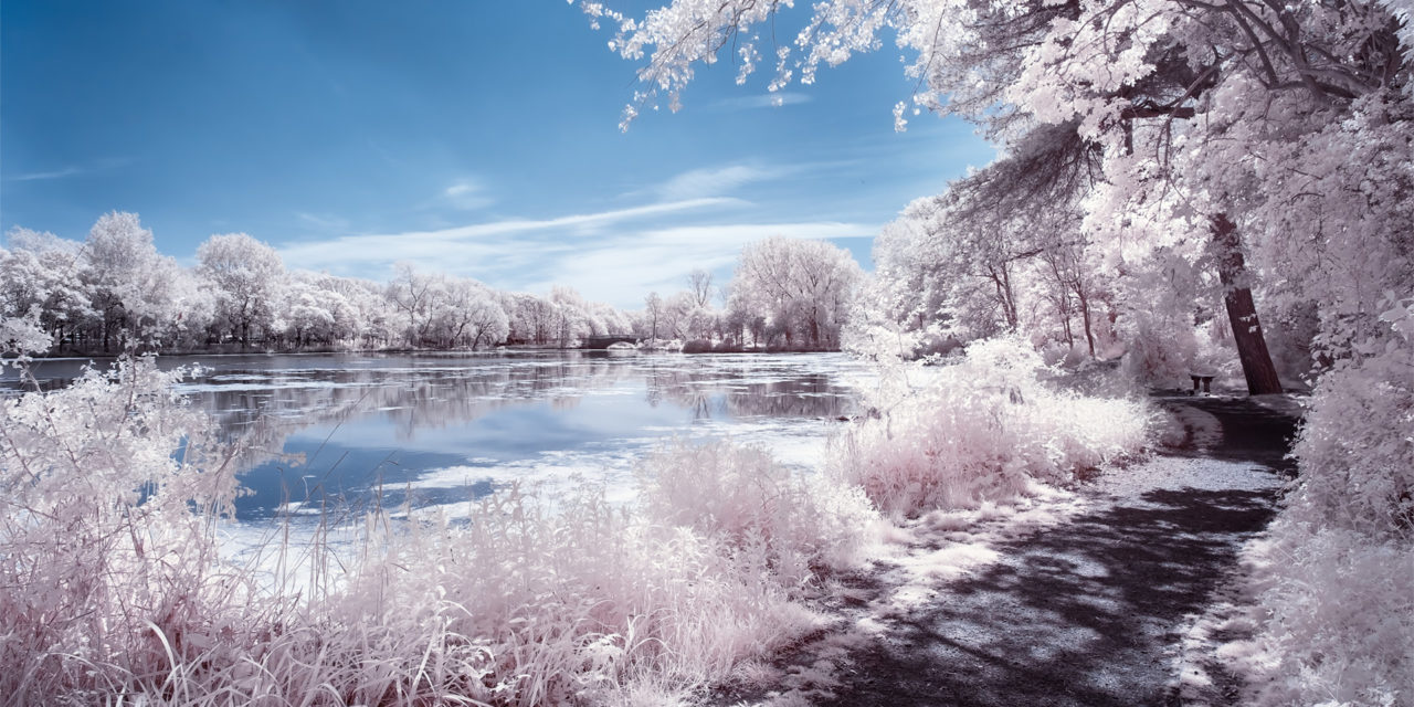 Stanley Park, May 2019 (IR) / Stanley Park, Show the Original, Landscape Photography, Infrared, Fujinon XF 14mm f/2.8, Fujifilm X-E2, Blackpool [stanley park may 2019 f 1280x640]