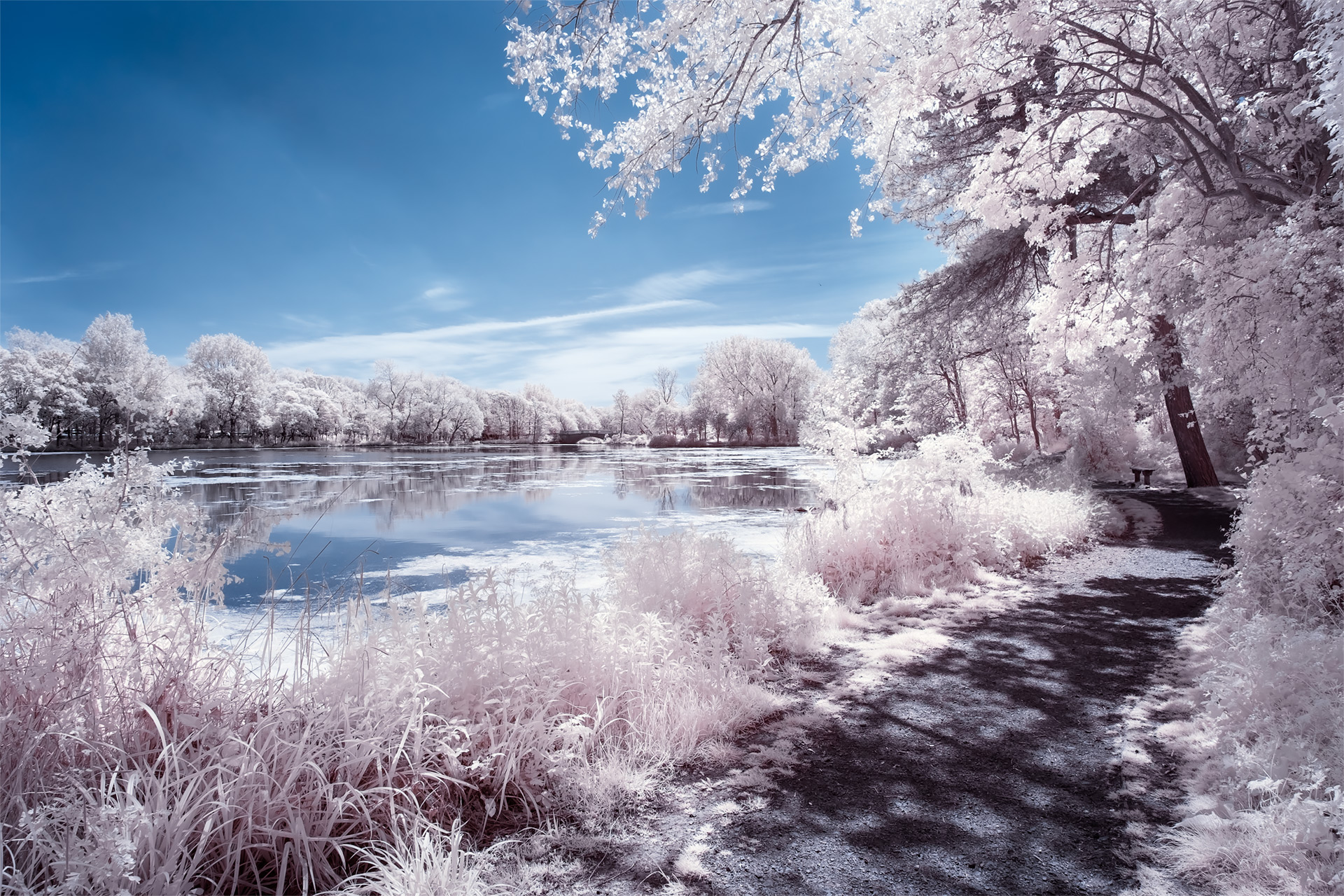 Stanley Park, May 2019 (IR) / Stanley Park, Show the Original, Landscape Photography, Infrared, Fujinon XF 14mm f/2.8, Fujifilm X-E2, Blackpool [stanley park may 2019 f]