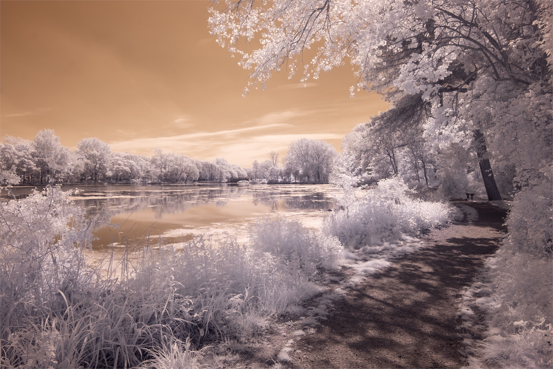 Stanley Park, May 2019 (IR) / Stanley Park, Show the Original, Landscape Photography, Infrared, Fujinon XF 14mm f/2.8, Fujifilm X-E2, Blackpool [stanley park may 2019 o]